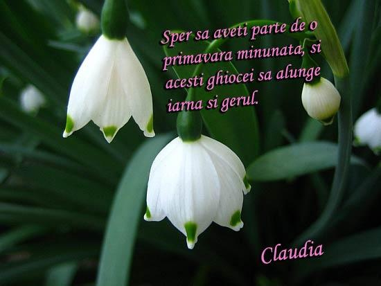 ghioceii_de_primavara
