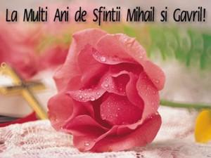 felicitare-mihail-si-gavril